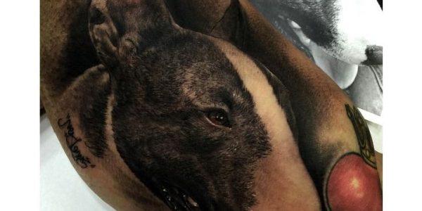 tattoos-de-bull-terrier-1
