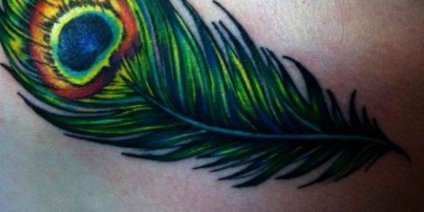 tatuagem-de-penas-de-passaros-3