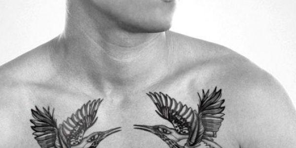 tatuagens-de-beija-flores-2