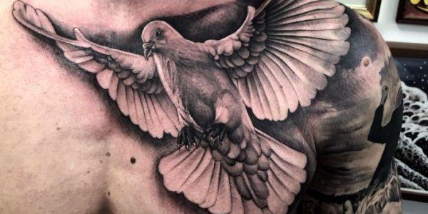 tatuagens-de-paloma