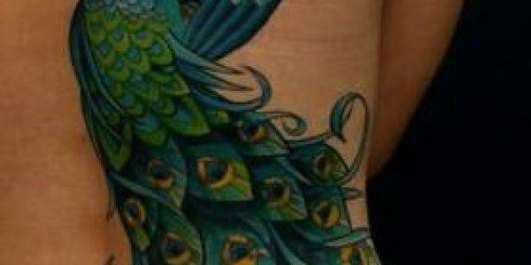 tatuagens-de-pavo-real-2