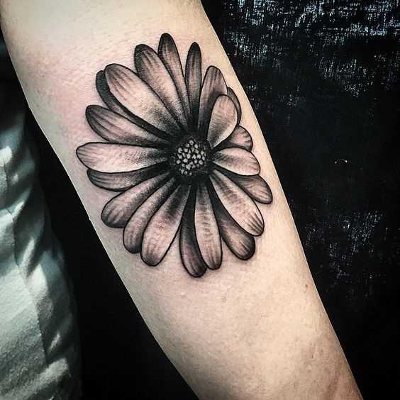 A foto da tatuagem de camomila no antebraço da menina