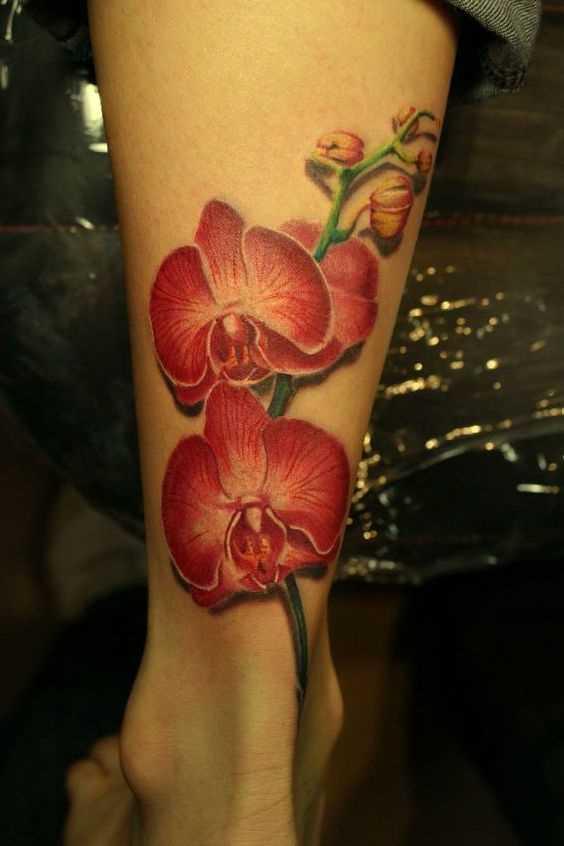 A foto da tatuagem de orquídea vermelha sobre a perna da menina