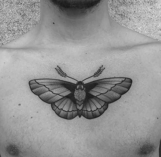 A tatuagem de inseto na cara no peito
