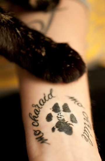 A tatuagem de uma menina no pulso - pata felina