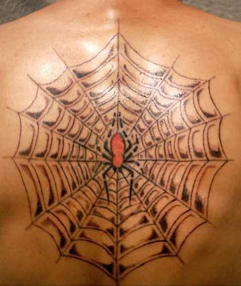 A tatuagem do cara em suas costas - uma teia de aranha e a aranha