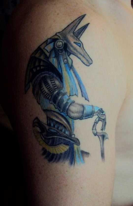 A tatuagem do cara no ombro em forma de anubis