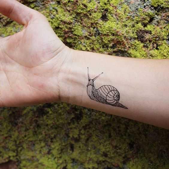 A tatuagem é um caracol no pulso de um homem
