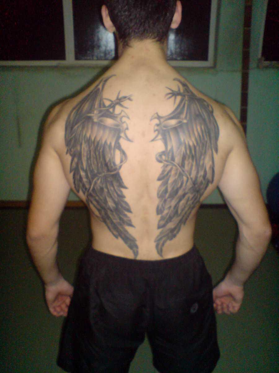 A tatuagem nas costas do cara - asas