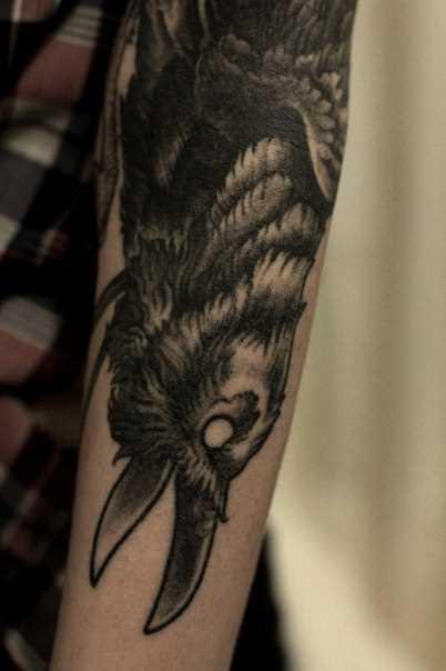 A tatuagem no braço de um cara - de- corvo