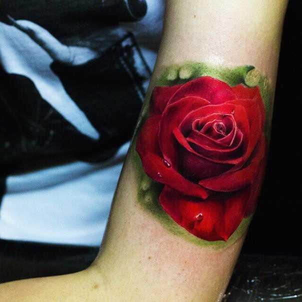 A tatuagem no braço de uma menina - rosa vermelha