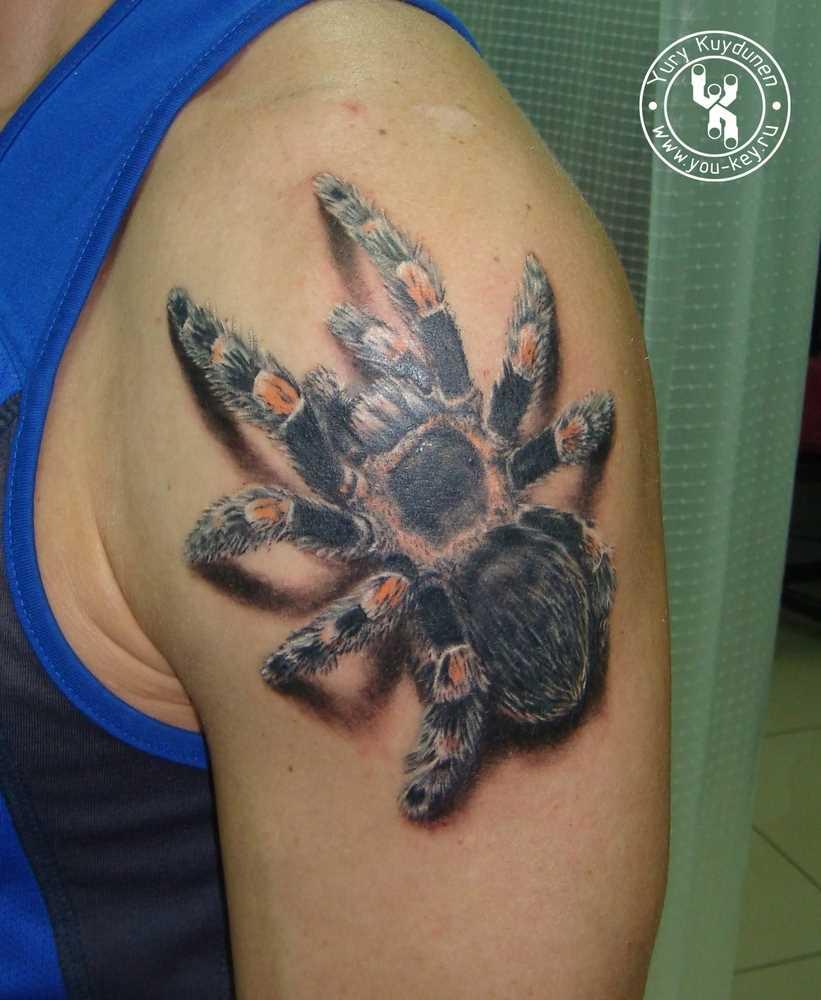 A tatuagem no ombro de homem - aranha
