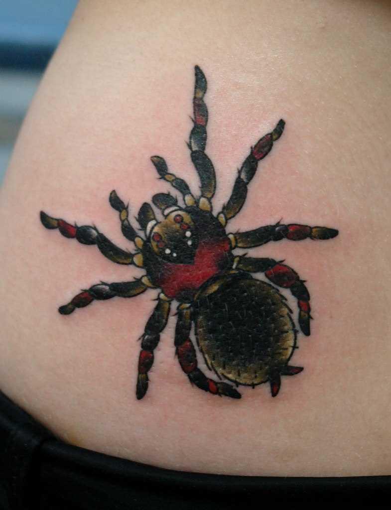 Aranha - de tatuagem na barriga da menina