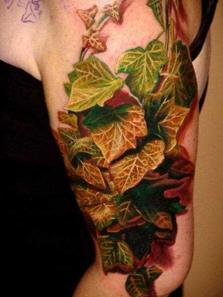 Bela tatuagem no ombro da menina - folhas