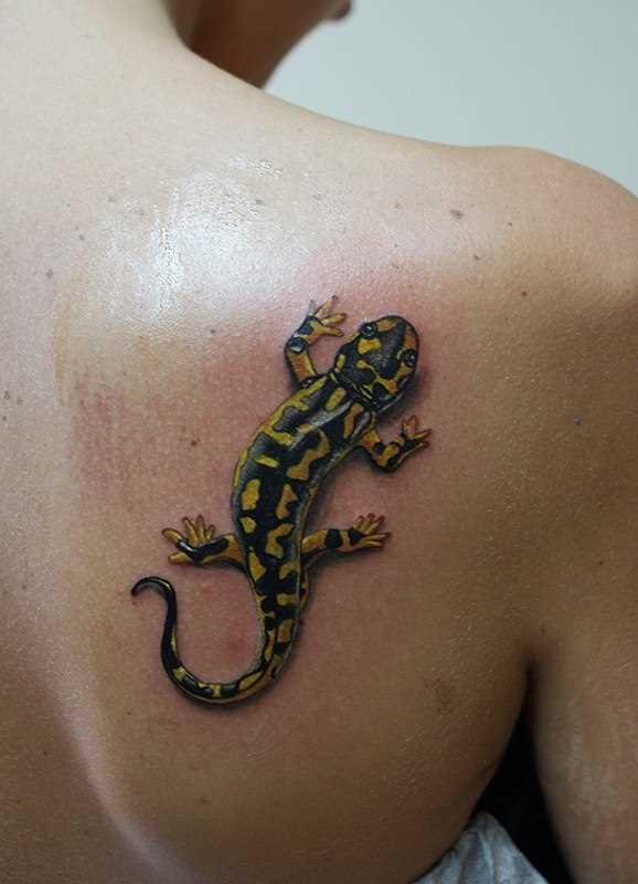 Cores de tatuagem blade meninas - salamandra