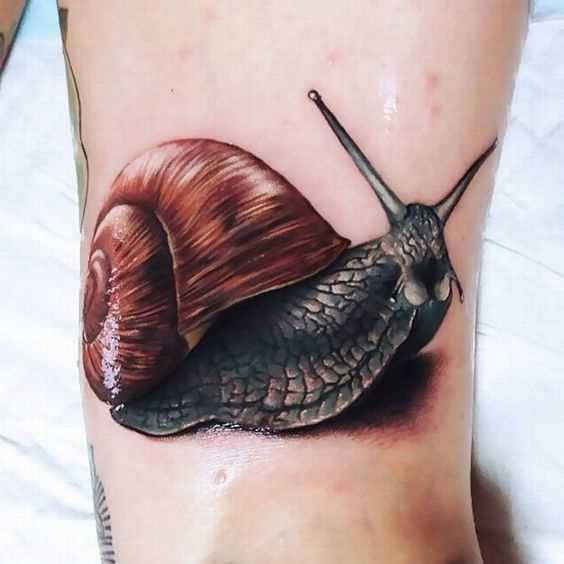 Cores de tatuagem é um caracol sobre o quadril da menina