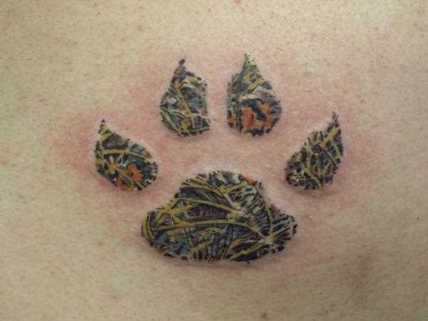 Cores de tatuagem na barriga da menina - pata