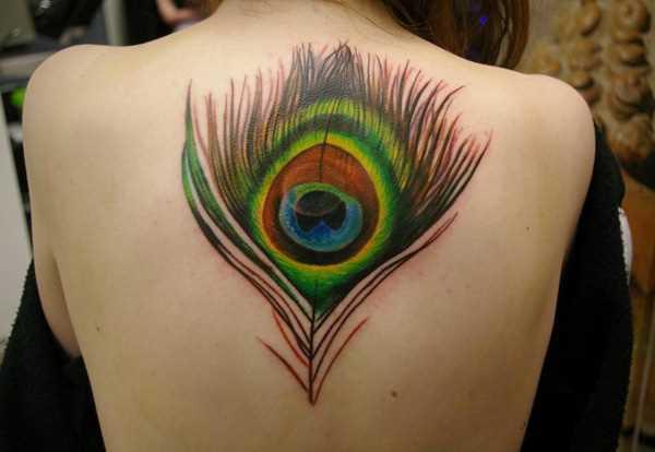 Cores de tatuagem que a menina nas costas em forma de caneta pavão