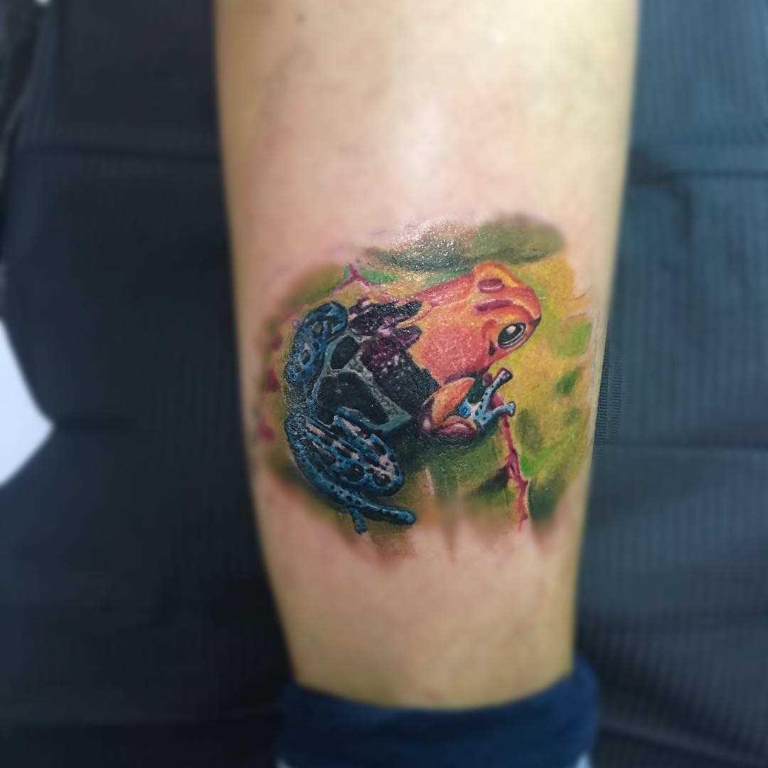 Cores de tatuagem sapo sobre a perna de um cara