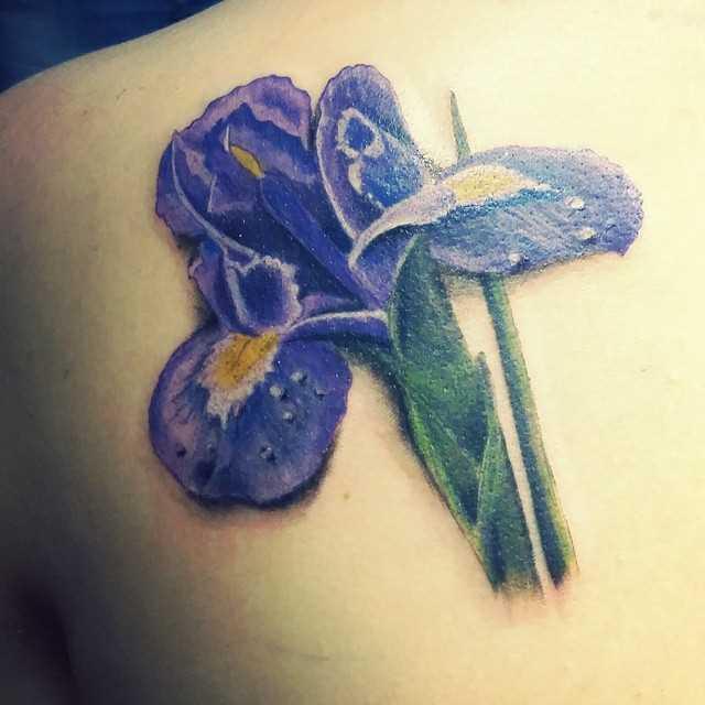 Fotos de tatuagem de íris blade menina