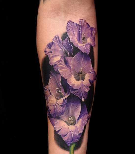 Fotos de tatuagem de roxo gladiola no antebraço da menina