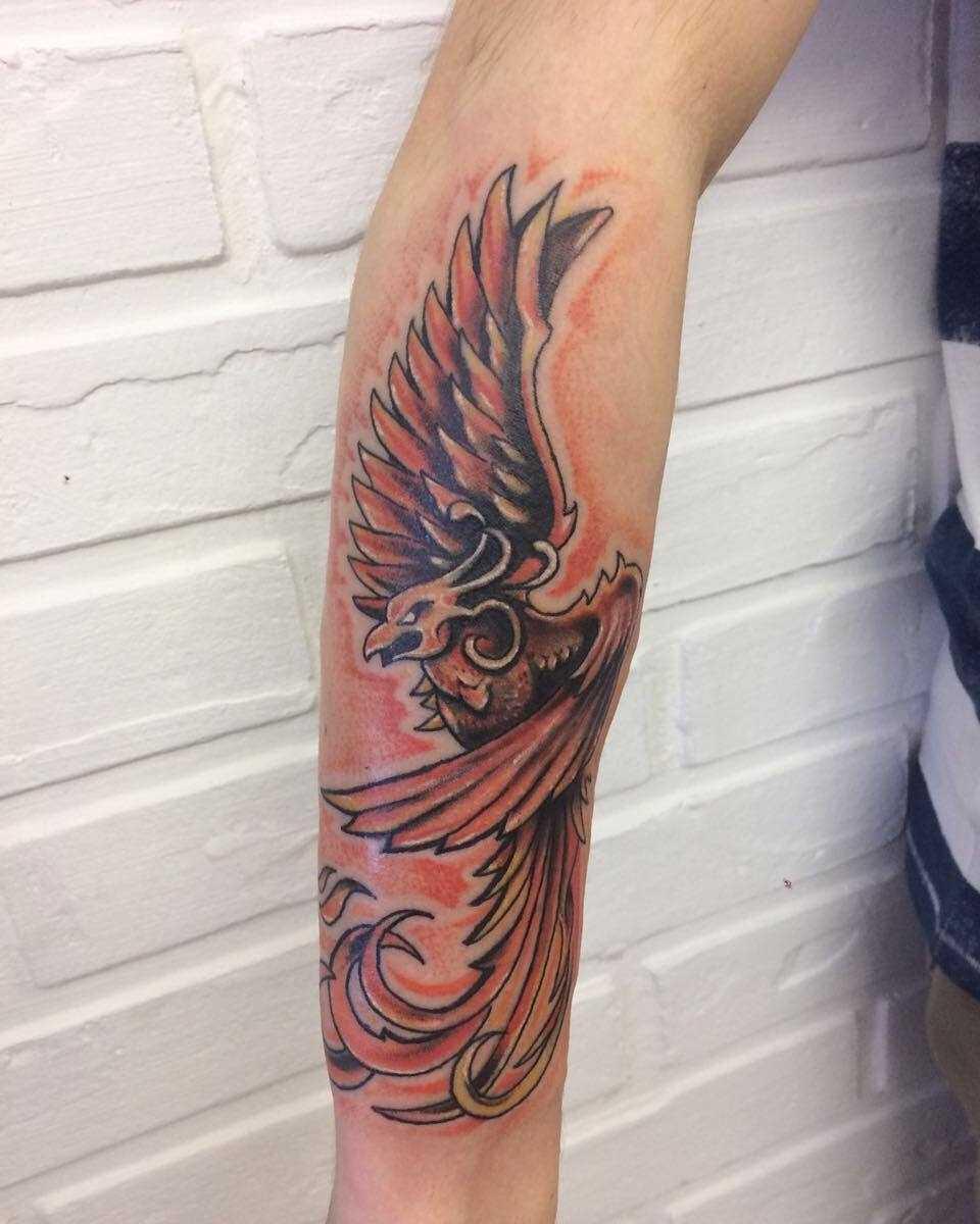 Fotos de tatuagem de uma águia no estilo newschool no antebraço cara