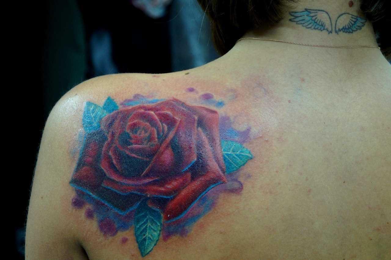 Rosa - tattoo blade menina