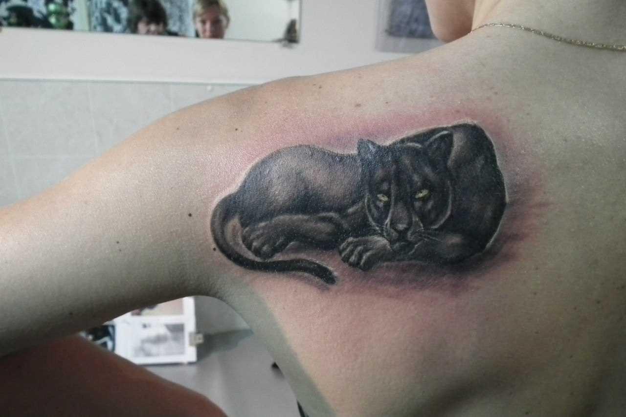 Tattoo blade o cara - pantera