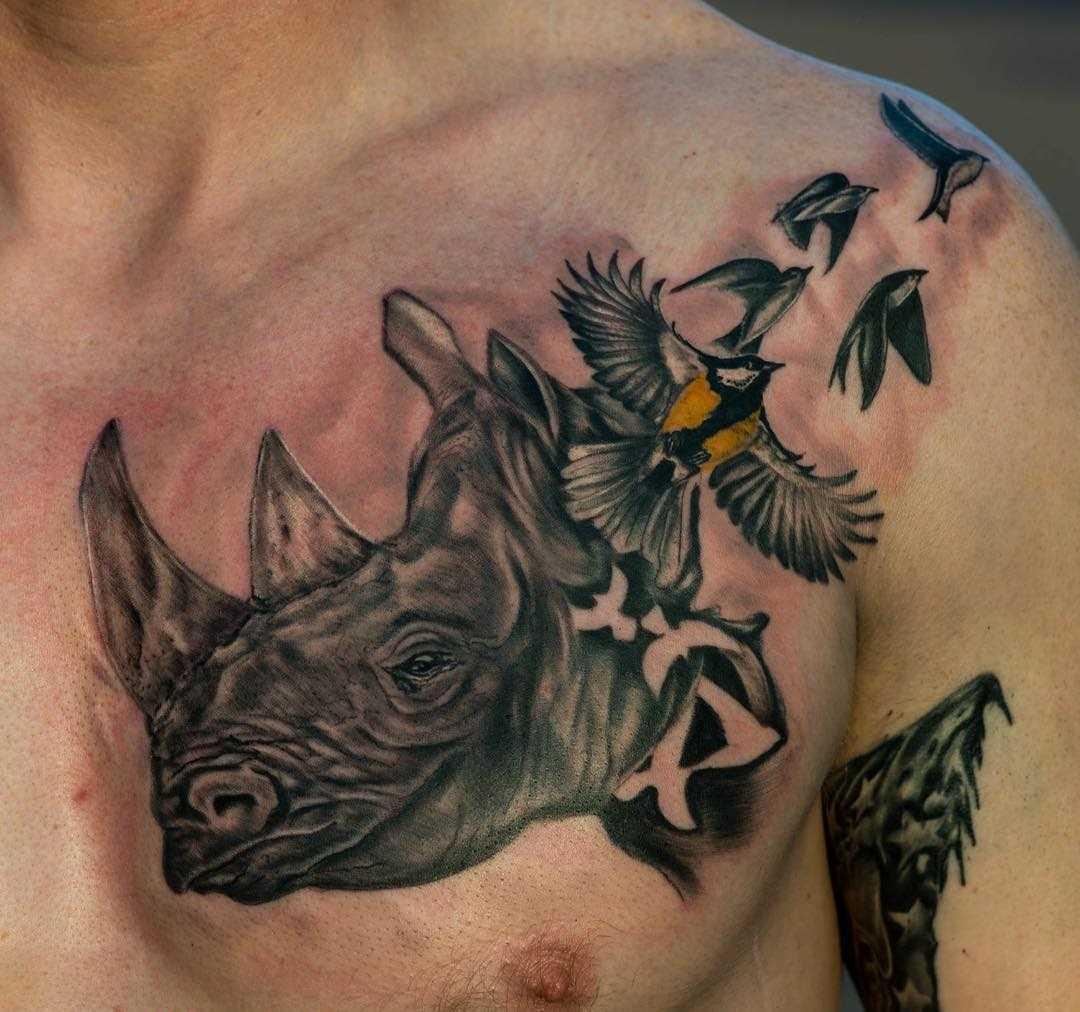 Tatuagem de rinoceronte com os pássaros no peito do cara