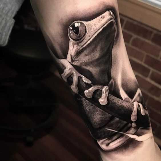 Tatuagem de um sapo no antebraço cara