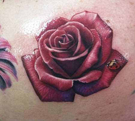 Tatuagem na barriga da menina - rosa e joaninha