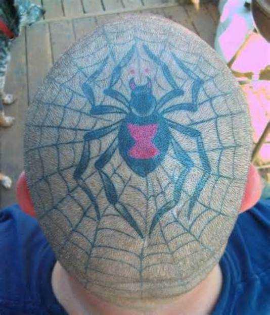 Tatuagem na cabeça de um cara - de- teia de aranha e a aranha