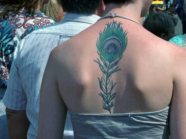 Tatuagem na coluna da menina - pena de pavão