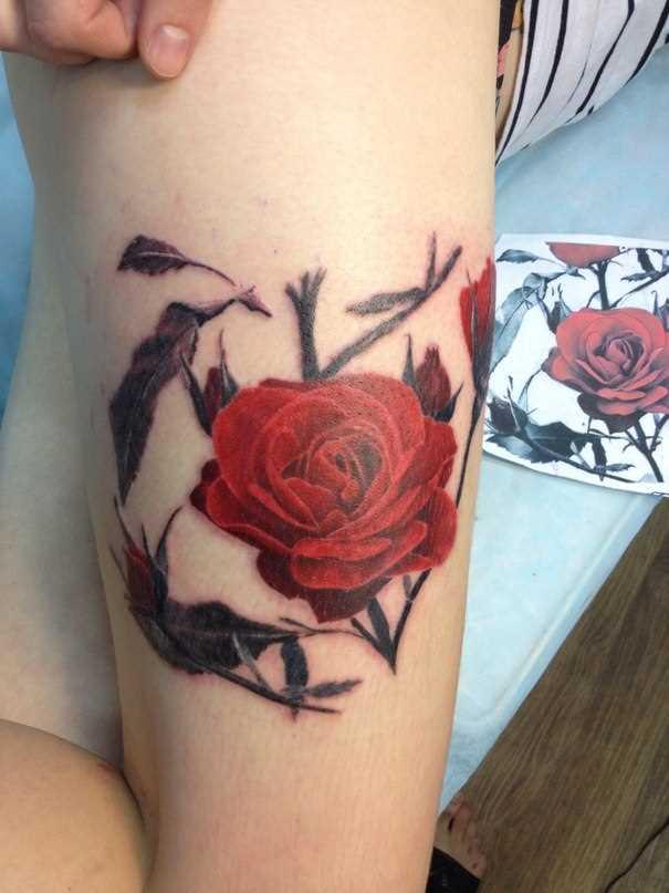 Tatuagem na coxa da menina - rosa vermelha