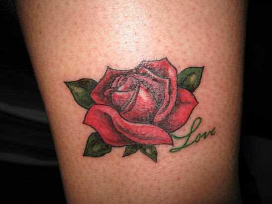 Tatuagem na perna da menina - rosa vermelha e a inscrição