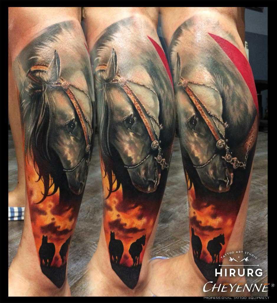Tatuagem na perna do cara - de- cavalo