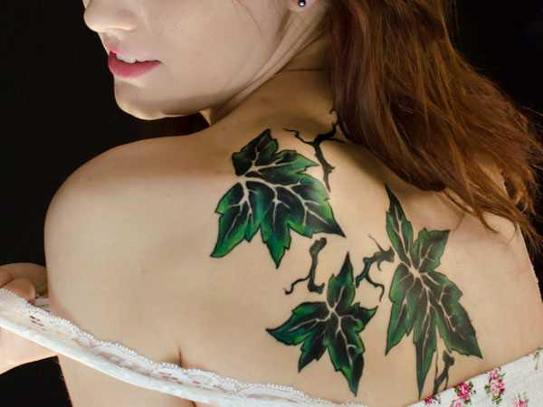 Tatuagem nas costas da menina - folhas verdes