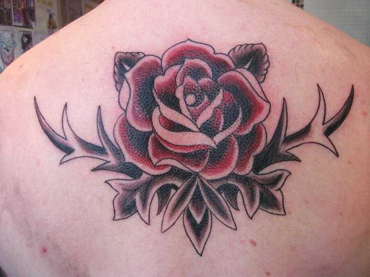 Tatuagem nas costas de uma menina - rosa