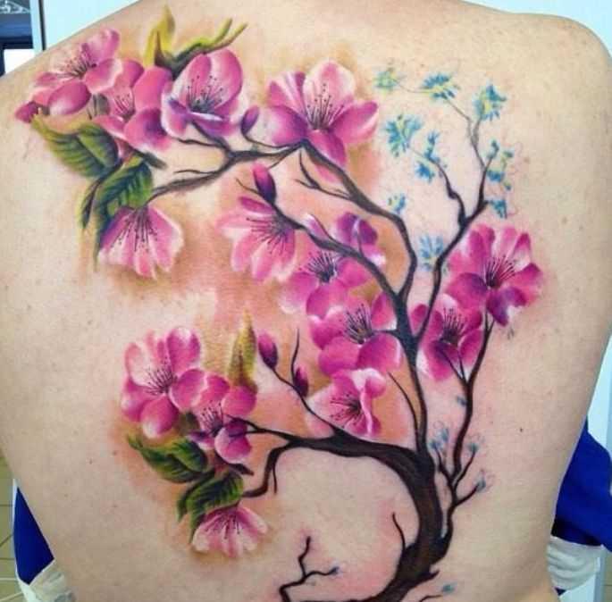 Tatuagem nas costas de uma menina - sakura