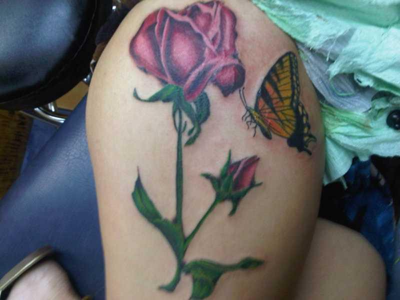 Tatuagem nas coxas da menina - rosa e a borboleta