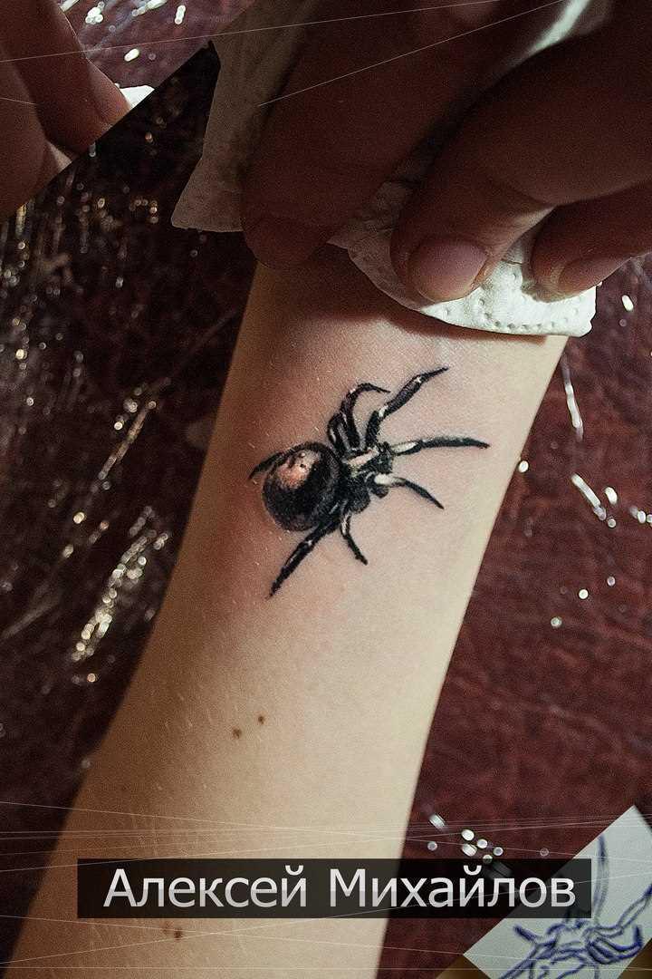 Tatuagem no antebraço, as meninas - aranha