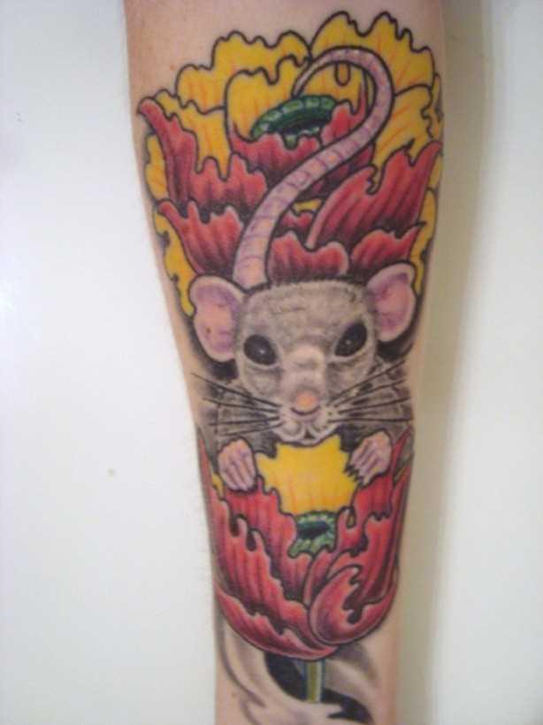 Tatuagem no antebraço da menina - um rato em cores