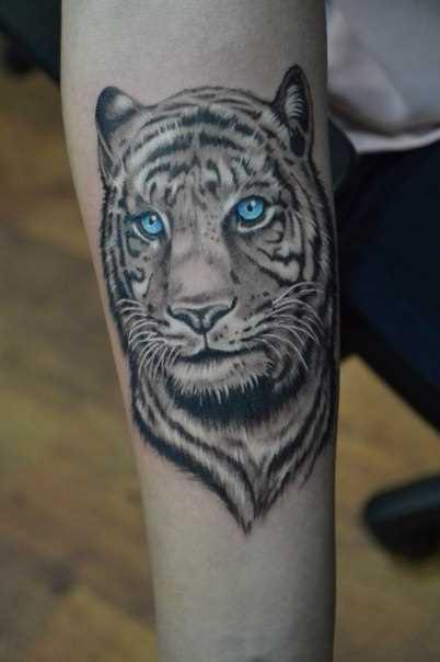 Tatuagem no antebraço menina de olhos azuis tigre