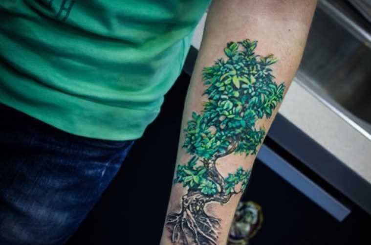 Tatuagem no antebraço meninas - árvore
