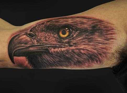 Tatuagem no braço de um cara - coroa