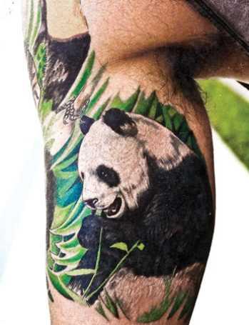 Tatuagem no braço de um cara - panda