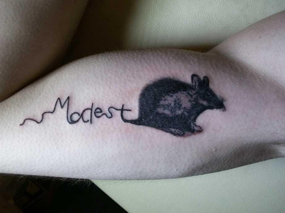 Tatuagem no braço do cara de rato e inscrição