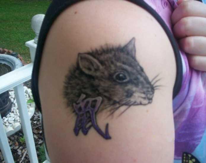 Tatuagem no ombro da menina - o mouse e o hieróglifo
