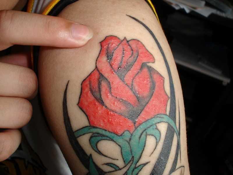 Tatuagem no ombro da menina - rosa e estampa