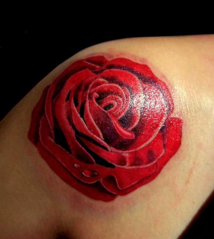 Tatuagem no ombro da menina - rosa vermelha